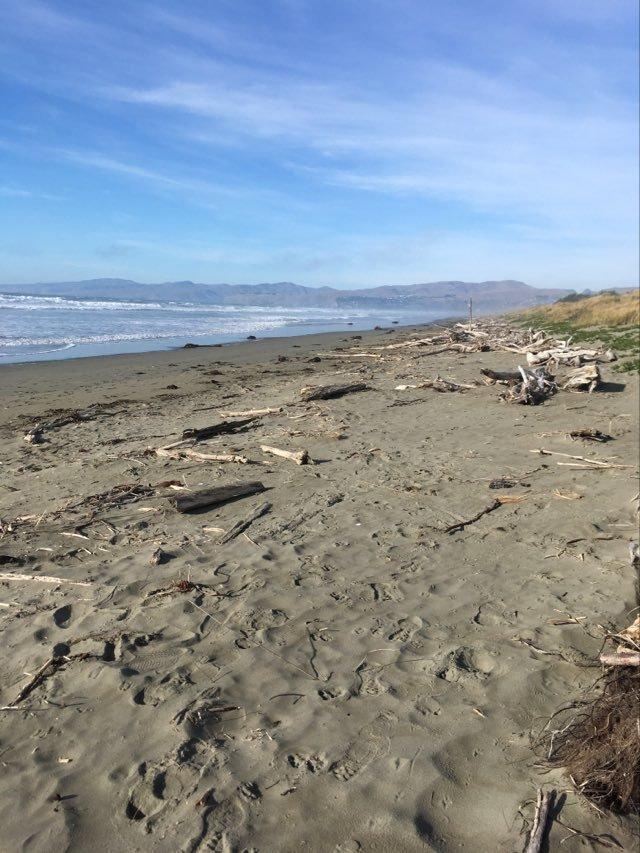 NB beach3
