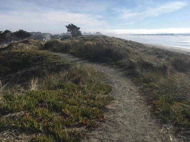 NB beach8